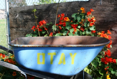 Otay Garden 015